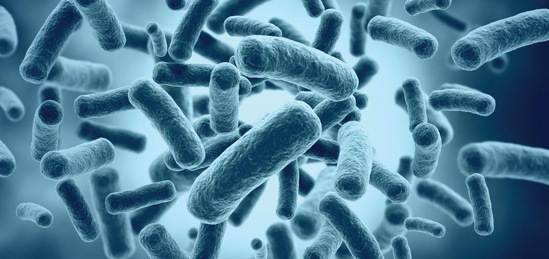 Gastroenterolozi odgovaraju: DA LI SU PROBIOTICI ZAISTA EFIKASNI?